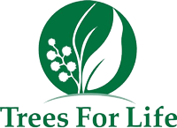 Tree For Life Logo